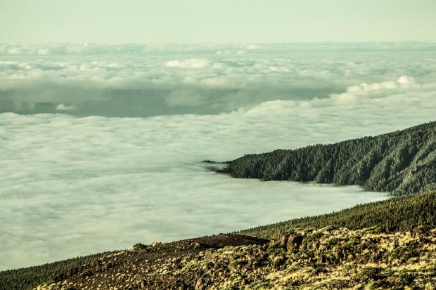 wolkenmeer el teide  (1 von 1)